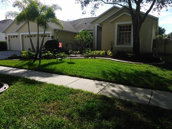 Lawn Care Service in Brandon, FL, 33510