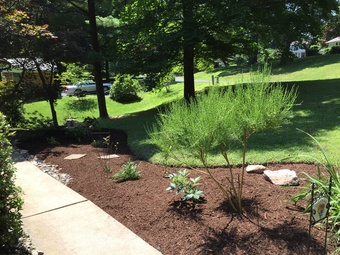 Lawn Care Service in Jarrettsville , MD, 21084