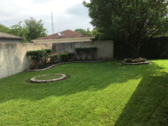 Lawn Care Service in Houston, TX, 77065