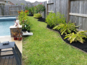 Lawn Care Service in Houston, TX, 77055