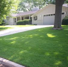Lawn Care Service in Missouri City, TX, 77489