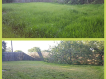 Lawn Care Service in Houston, TX, 77083