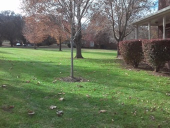 Lawn Care Service in Nashville, TN, 37218