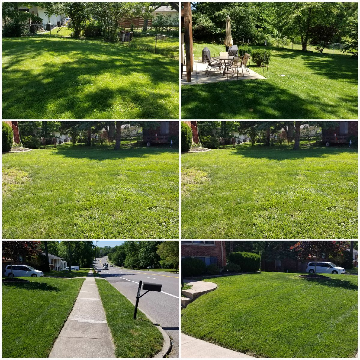 Lawn Care Service in St Louis, MO, 63126