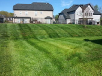 Lawn Care Service in Charlotte, NC, 28216