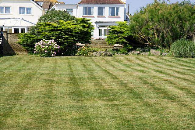 Lawn Care Service in Duncanville, TX, 75137