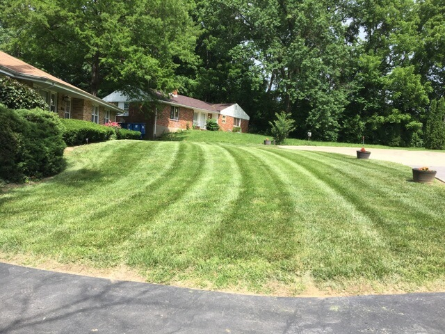 Lawn Care Service in Saint Louis, MO, 63136