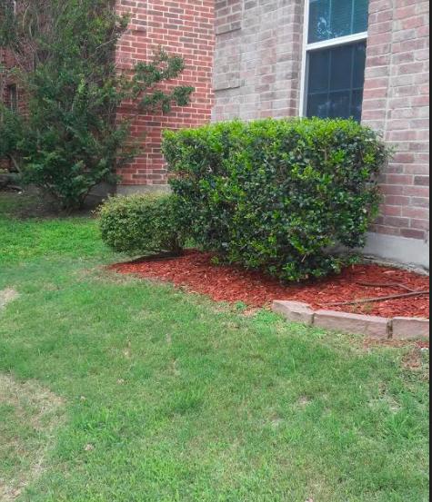Lawn Care Service in Dallas , TX, 75051