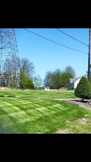 Lawn Care Service in Clarksville , TN, 37040