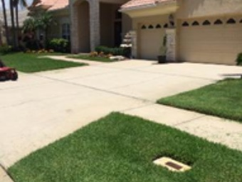 Lawn Care Service in Land O Lakes, FL, 34638