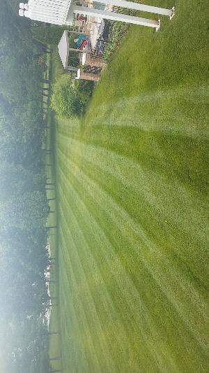 Lawn Care Service in Saint Louis, MO, 63129