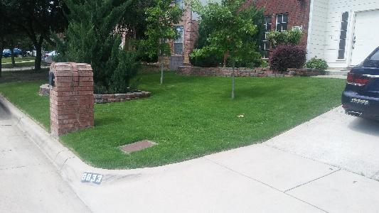Lawn Care Service in Fort Worth, TX, 76110