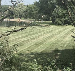 Lawn Care Service in Wauconda, IL, 60084