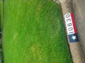 Lawn Care Service in Houston, TX, 77088