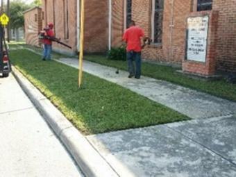 Lawn Care Service in San Antonio, TX, 78227
