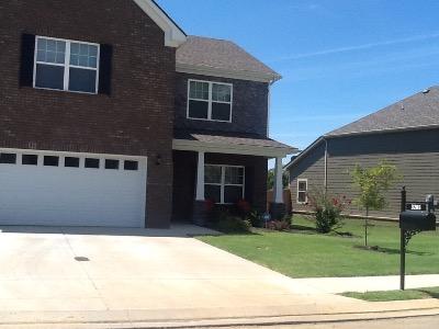 Lawn Care Service in Rockvale, TN, 37128