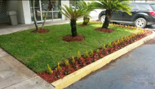 Lawn Care Service in Clarcona, FL, 32710