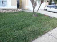 Lawn Care Service in Kissimmee, FL, 34741