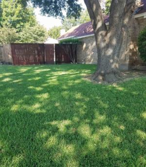 Lawn Care Service in Fort Worth, TX, 76162