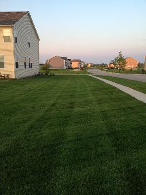 Lawn Care Service in Oswego, IL, 60543