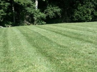 Lawn Care Service in Gastonia, NC, 28054