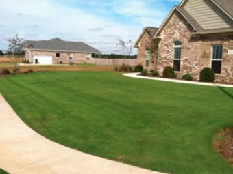 Lawn Care Service in Lewisville, TX, 75067