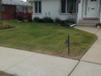 Lawn Care Service in Chicago, IL, 60618