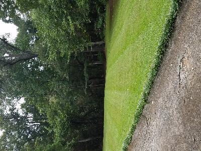 Lawn Care Service in Forsyth, GA, 31029