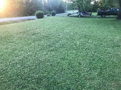 Lawn Care Service in Lewisburg , TN, 37047