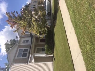 Lawn Care Service in Charlotte , NC, 27704