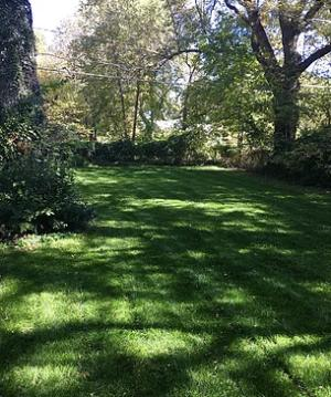 Lawn Care Service in Irving, TX, 75039