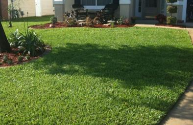 Lawn Care Service in St. Augustine, FL, 32084
