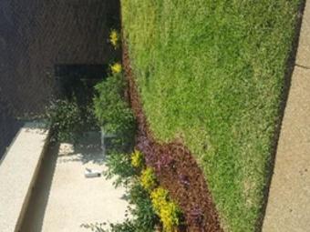 Lawn Care Service in Tuscaloosa, AL, 35406