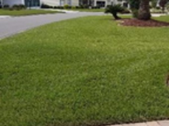 Lawn Care Service in Clermont, FL, 34711