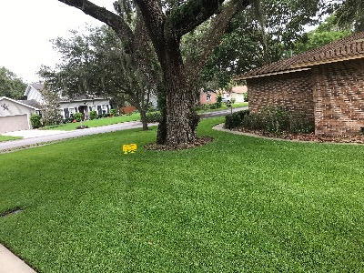 Lawn Care Service in Lakeland , FL, 33811
