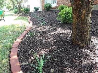 Lawn Care Service in Jennings, MO, 63136