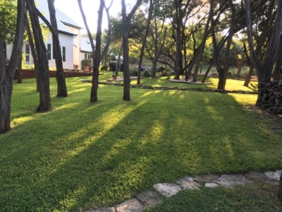 Lawn Care Service in Kerrville , TX, 78028