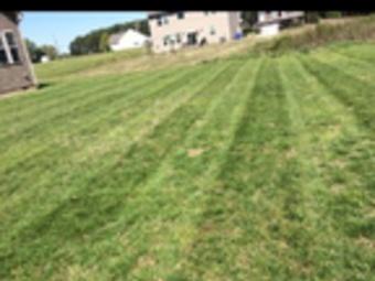 Lawn Care Service in Concord, NC, 28025