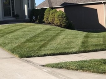 Lawn Care Service in Houston, TX, 77084