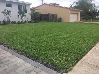 Lawn Care Service in Miami, FL, 33155