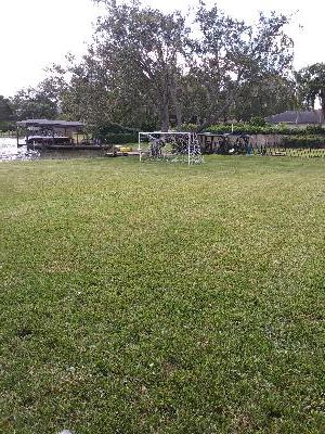Lawn Care Service in Orlando, FL, 32806
