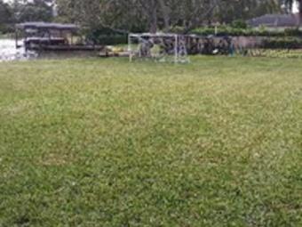 Lawn Care Service in Orlando, FL, 32806