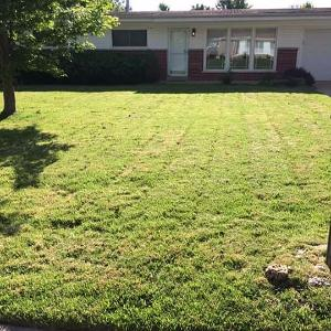 Lawn Care Service in Mathis, TX, 78407