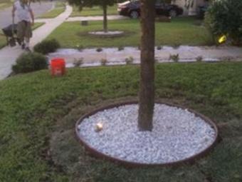 Lawn Care Service in Corpus Christi, TX, 78412
