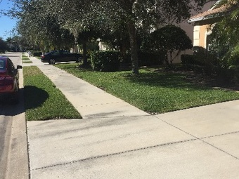 Lawn Care Service in Bradenton , FL, 34205