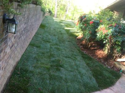 Lawn Care Service in Atlanta, GA, 30309