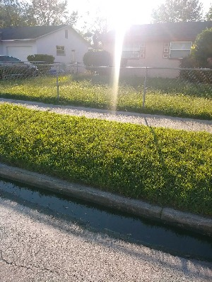 Lawn Care Service in Kissimmee , FL, 34758