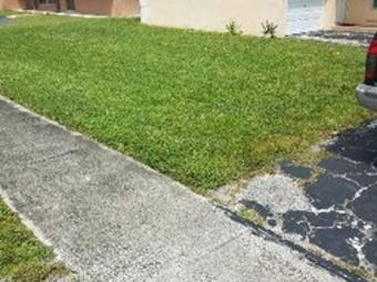 Lawn Care Service in Sunrise, FL, 33313