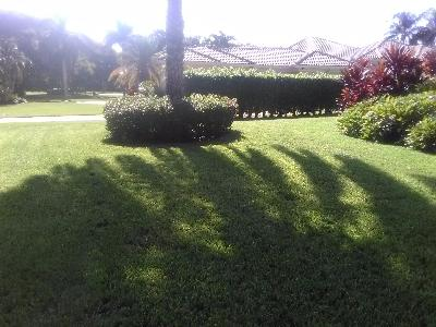 Lawn Care Service in Pompano Beach, FL, 33069