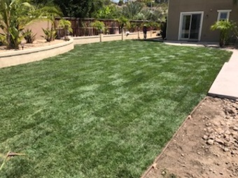 Lawn Care Service in El Cajon , CA, 92019